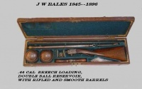 Bales air rifle