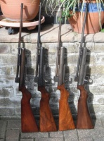 collection of Webley MK 1 rifles.jpg