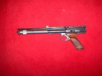 Crosman 600 long barrel .jpg