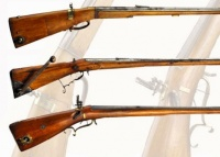 Early German Bellows air guns.jpg